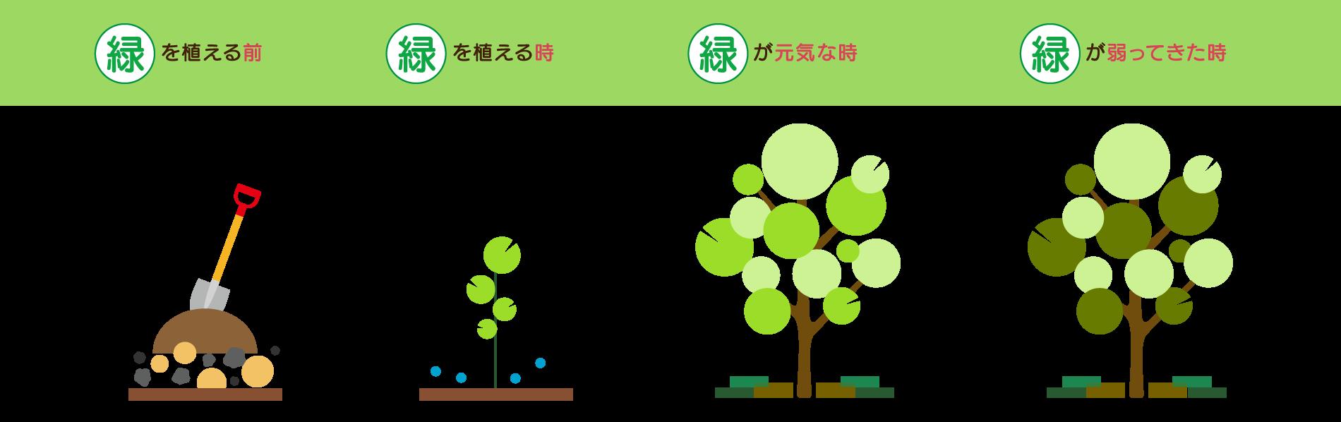 緑を植える前